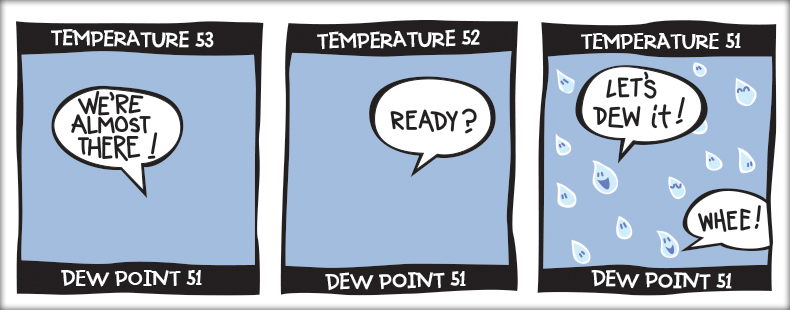 The Dew Point
