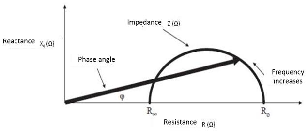 Bioelectrical Resistance