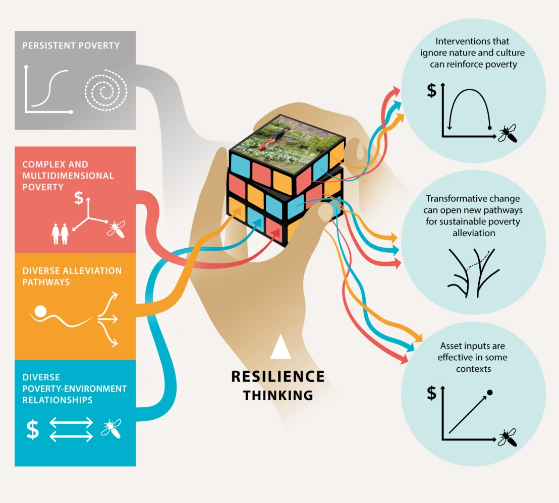 Resilience Inputs