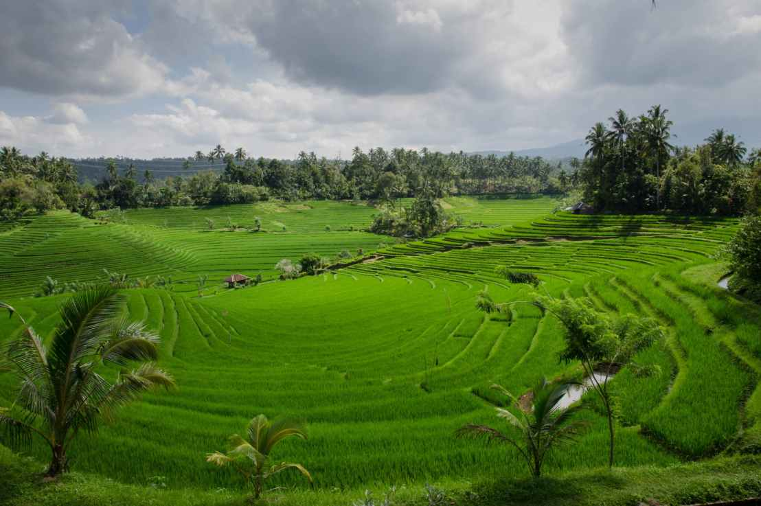 Why Renewable Energy would be a Great Investment forIndonesia