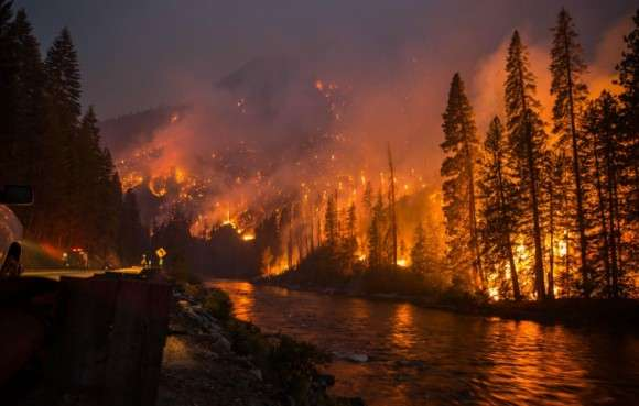 Why Do Forest Fires Cause Air Pollution?