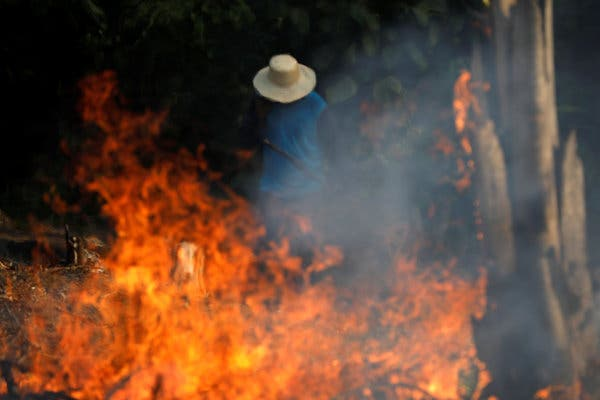 Why Fires are Growing at an Exponential Rate in the Brazilian Rain Forest?