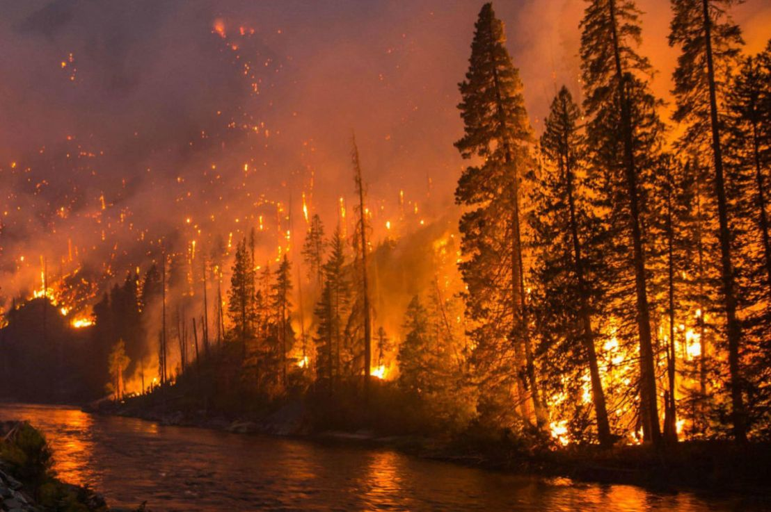 How Wildfires Can Affect Water Quality