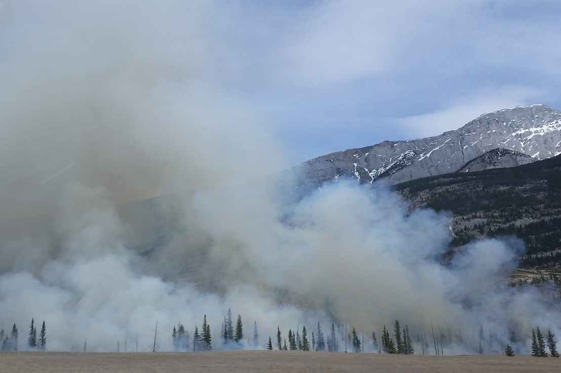 Wildfire Safety Zones