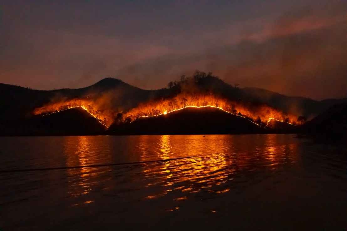 Why Wildfires Drive Carbon Emissions Through theRoofs
