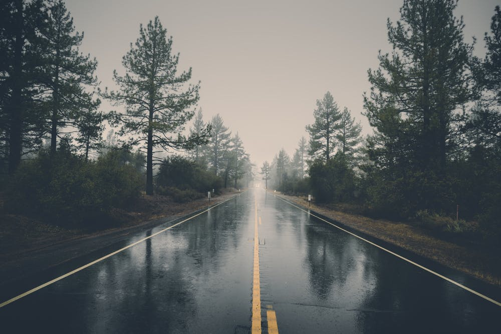 Wet Seasons