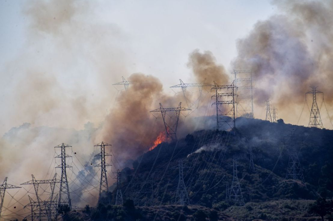 Why Utilities Should Trim Trees Near Roads for WildfireResilience