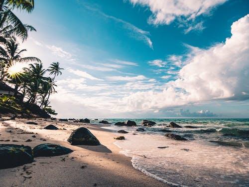 How Ocean Waves CarrySediment