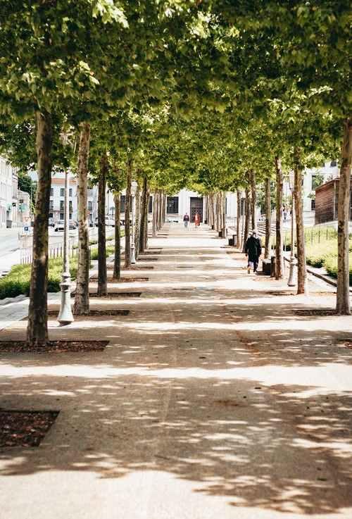 Why Global Warming Will Make Sidewalks LessWalkable